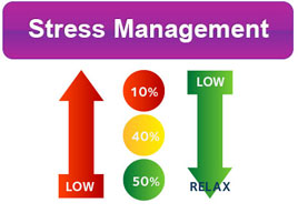 The Stressmanager